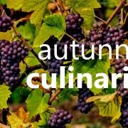 autunno culinario - kulinarischer herbst ... kochkurs um küchencenter gumpendorf mit Daniel Graschl
